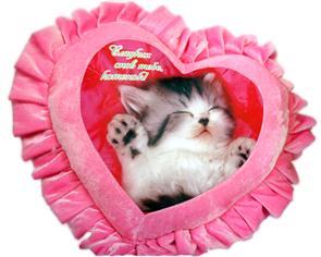 фото на подушке сердце